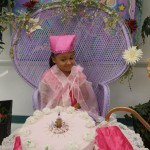 Fairy Admiring Krendoll Cake